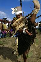 A Zulu bride kicks her leg high, symbolically showing her mother that she is a virgin, South Africa