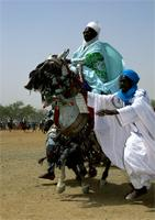A horseman races towards the Emir of Katsina during the Sallah celebrations, participating in a display known as Hawan Daushe. Sallah celebrations, Hausa, Katsina, Nigeria