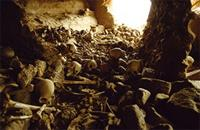 Burial cave floor is strewn with accumulated bones of the dead, Dogon people, Mali