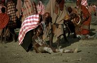 Emotionally-crazed Maasai warriors being calmed by their mothers.