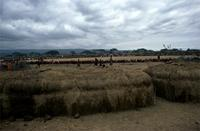 Maasai warriors gathered in a large circle on the final day of Eunoto ceremony.