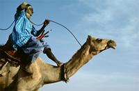 The winner of a camel race, Woodabe people of Niger.