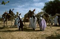 Tuaregs with camels gather in finest cloths at the start of the rainy season, Niger.