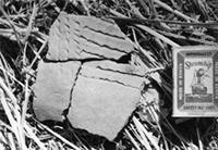 Oldogom East, sherd dug from ground