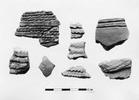 Oldogom sherds, one kilometre East of river