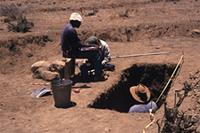 Working shot; recording excavation of [5]; Direction - South; Scale - adults