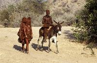 Himba family arriving back at the village, man riding on a donkey.