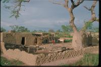 Middle Niger, Mali: a village scene in Mopti