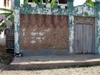Photograph in the streets of Lamu, Kenya