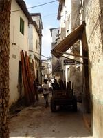 Photograph of one of the main Streets in Lamu, Kenya