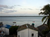 Photograph of a Palm, Buildings and the Sea, Lamu Town, Kenya