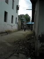 Photograph of the streets, Lamu, Kenya