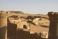 Photogrammetric image of area 100 within the Great Enclosure in Musawwarat es-Sufra, Sudan