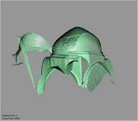 Point cloud of several domed ceilings in the Great Mosque in Kilwa Kisiwani, Tanzania