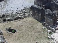 Photogrammetric image of the north-east corner and courtyard of the Gereza in Kilwa Kisiwani, Tanzania