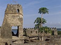 Photogrammetric image of the western part and southwest tower of the Gereza in Kilwa Kisiwani, Tanzania