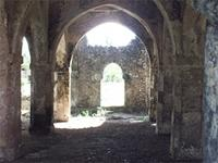 Photogrammetric image of the large extension in of the Great Mosque in Kilwa Kisiwani, Tanzania