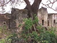 Photogrammetric image of the south east corner of the Great Mosque in Kilwa Kisiwani, Tanzania