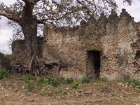 Photogrammetric image of the east side of the Great Mosque in Kilwa Kisiwani, Tanzania