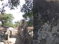 Photogrammetric image of the south side of the Great Mosque in Kilwa Kisiwani, Tanzania