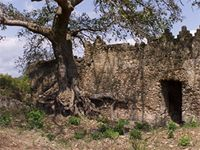 Stereoscopic photograph of the east side of the Great Mosque in Kilwa Kisiwani, Tanzania