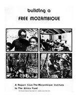 Building a Free Mozambique: A Report from The Mozambique Institute to The Africa Fund