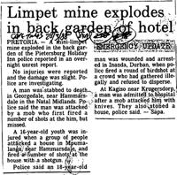 Limpet mine explodes in back garden of hotel