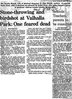 Stone-throwing and birdshot at valhalla park: One feared dead